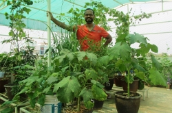 Meet Prabal Mallick- The Gardening Expert Behind Organic Terrace