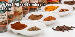 10 Best Mixer Grinders In India